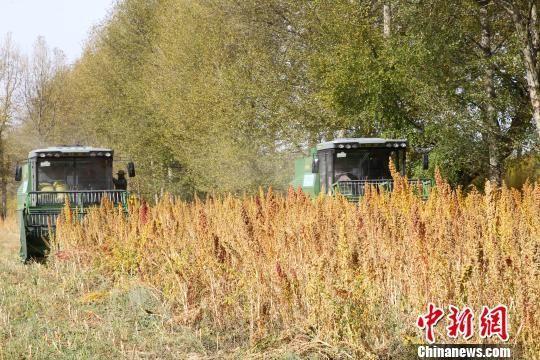山东省2018-2020年农机新产品购置补贴试点工作实施方案