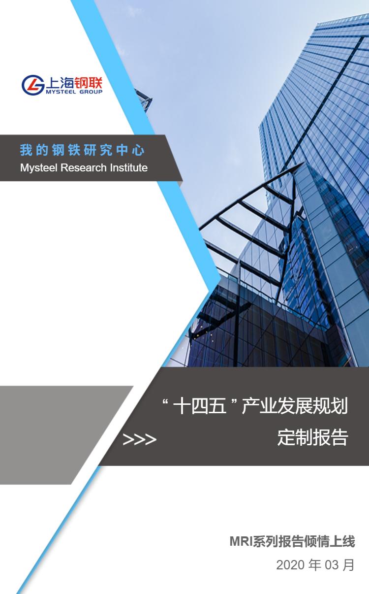 """钢铁行业""""十四五""""发展规划定制报告框架"""